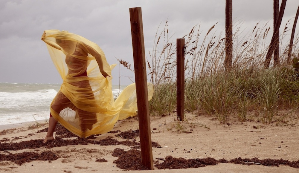 Tangled by Sandy Winds. Yellow