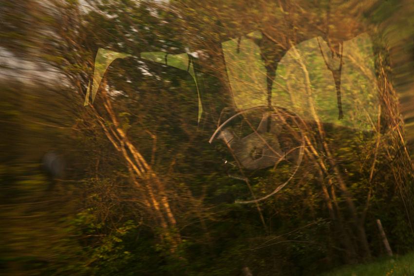 Chralie's van, reflections