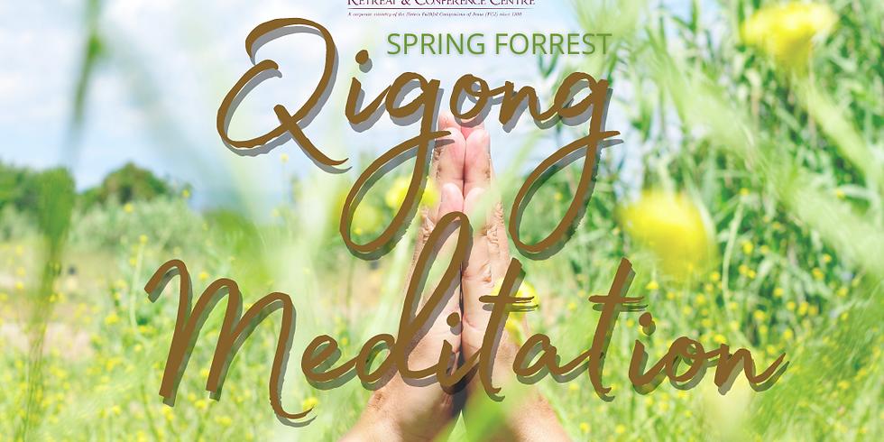 Spring Forest Qigong Meditation