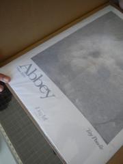 Lámina cubierta por papel de seda