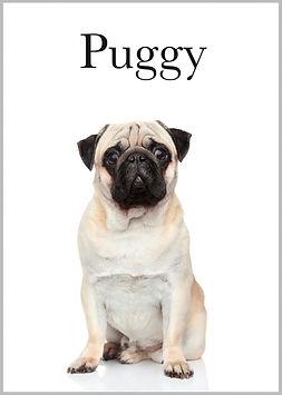 Puggy minimalista.jpg