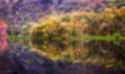 Rflejos colores FINALE.jpg