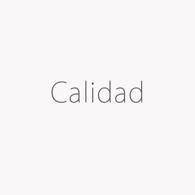 Plantilla Blanca web Calidad.jpg