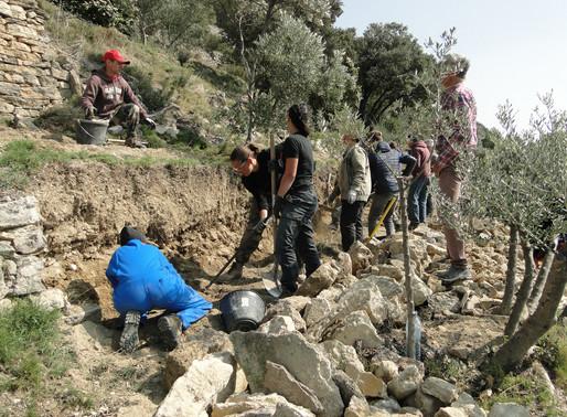 Les stagiaires du CFPPA de Carpentras ont remonté 10m de murets