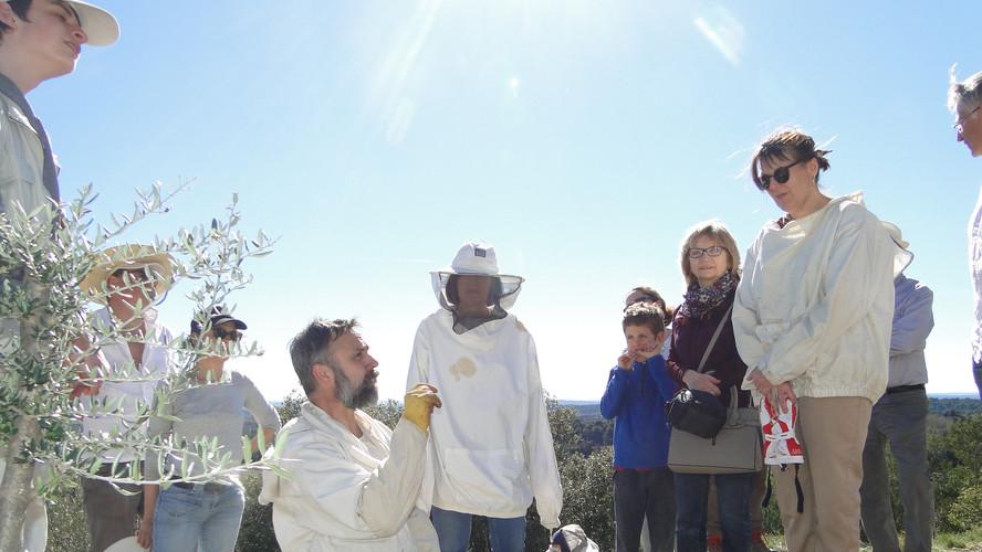 Journée introduction des abeilles 16 mars 2019