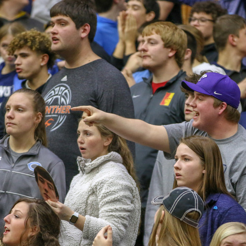 I took this photo of the crowd at a state basketball game. I like how it focuses on the student pointing in a packed crowd of students and captures the upset emotions of the whole section.