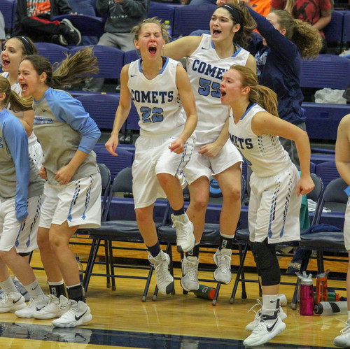 Basketball bench photos are one of my favorite type of sports photos to capture. This photo shows everyone on the bench jumping and getting excited for their team.