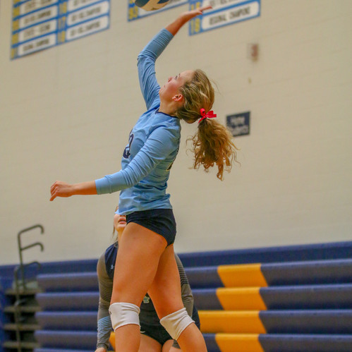 I chose to include this volleyball photo because I think it's a nice action shot and captures the player ready to hit the ball.