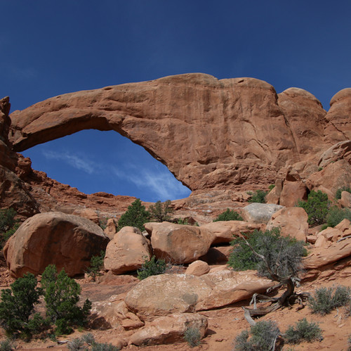 """This photo was taken in Arches National Park this past summer. I like how the bright blue sky helps to make the arch """"pop"""" in the photo."""