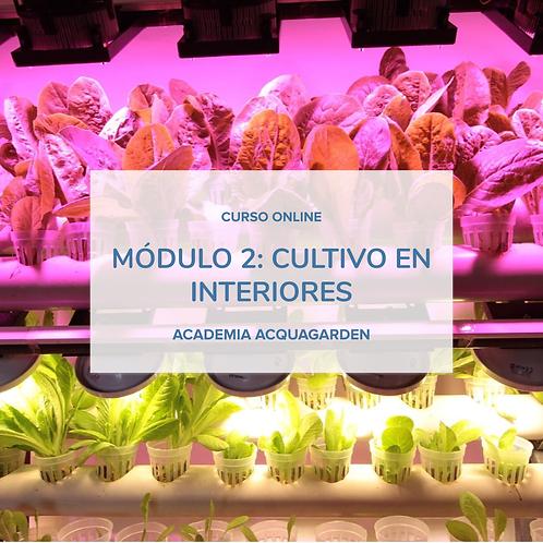 Módulo 2 - Cultivos en interiores - Online