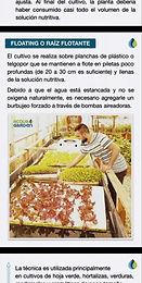 Rodrigo de AcquaGarden cultivando en hidroponia floating