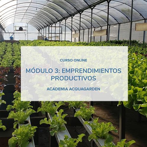 Módulo 3 - Emprendimientos productivos - Online