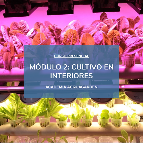 Módulo 2 - Cultivos en interiores - Presencial