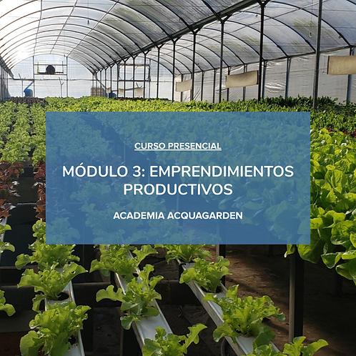 Módulo 3 - Emprendimientos Productivos - Presencial
