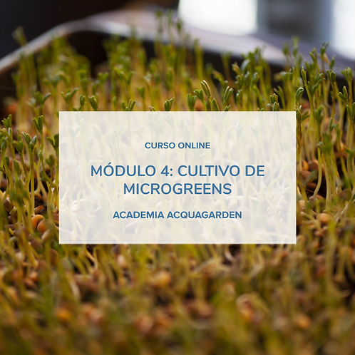 Módulo 4 - Cultivo de microgreens - Online