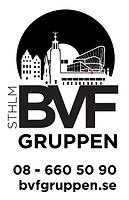 BVF gruppen.png