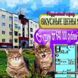 Семейный жилой комплекс «Радужный город» с.Верх-Тула