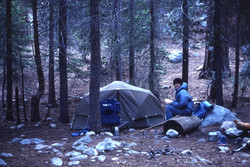 Camp at Upper Paradise Valley June '82
