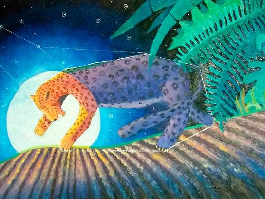 Constelación Jaguar.jpg