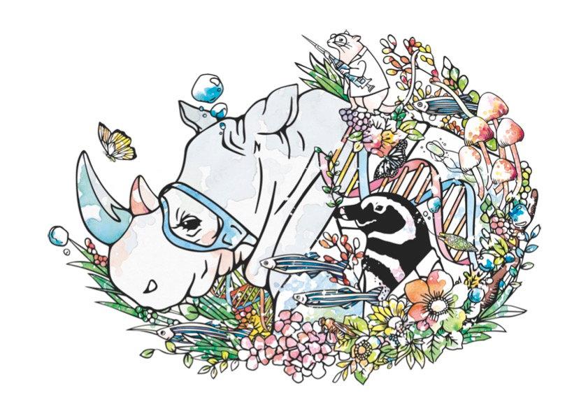 FIX_illustration.ai.jpg