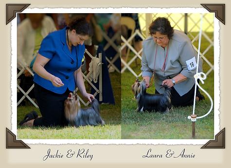JaLa Yorkshire Terriers - Laura & Jackie