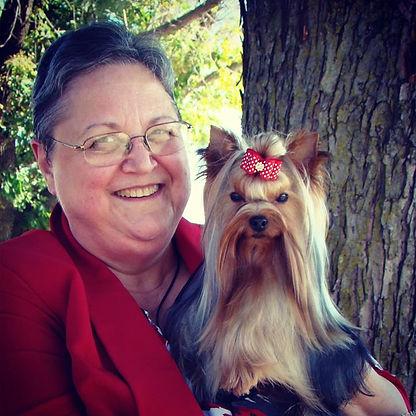 Laura Vance - JaLa Yorkshire Terriers