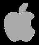 apple Logo Grey.png