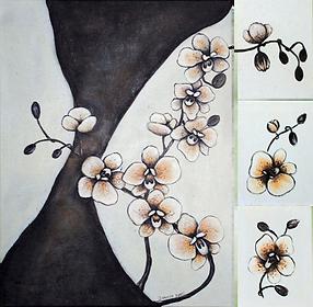 bild-blume-023a-orchidee.png