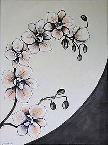 bild-blume-022-orchidee.jpg