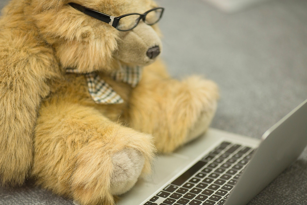 Are webinars just a bunch of fluff…or valuable content for a great ROI?