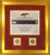 frame award ncacp.jpg