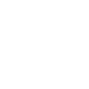 fion-white.png
