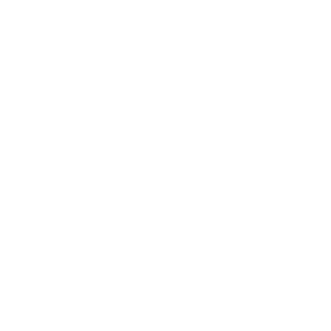 honda-white.png