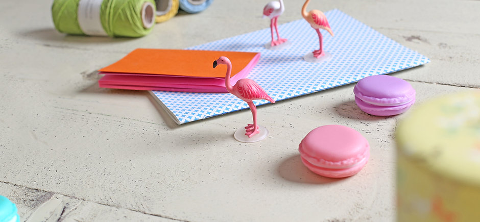 Flamingos and Macaroons
