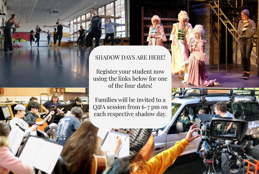 Shadow Days - Website Blurb.jpg