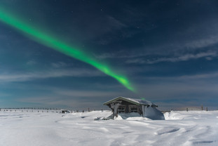 Northern Light Beauty