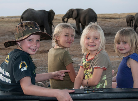 4 Tips for Planning a Meaningful Safari with Kids