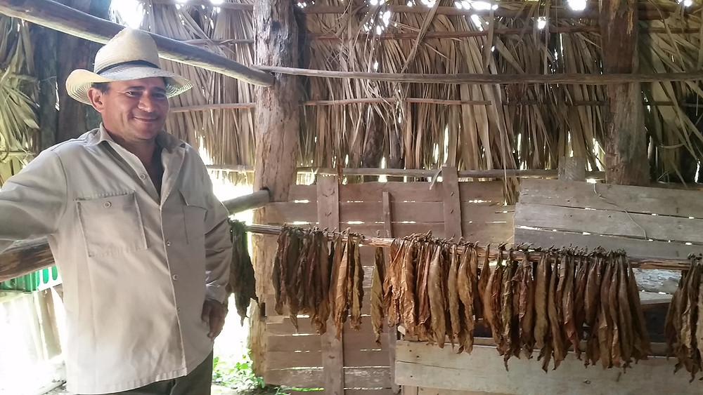 Cuban cigar worker