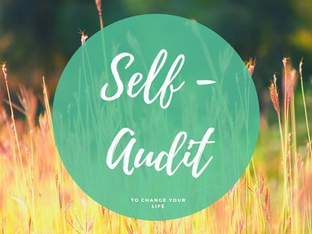 Self-Audit Importance
