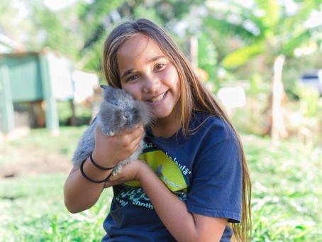 Kauai Animal Education Center