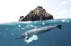 plastic%20ocean5_edited.jpg