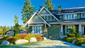 Keep Your Lawn Green During Winter
