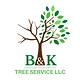 B&K Tree Service Logo.png