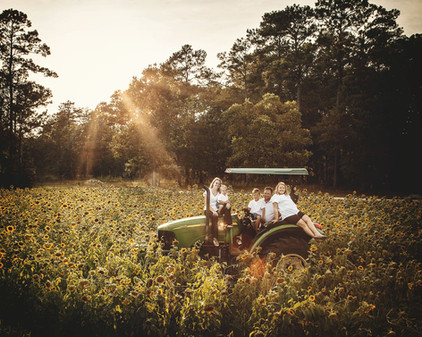 Tractors Sunflower and Family Photography