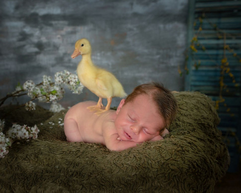 Easton with Duck
