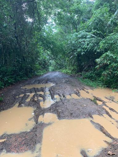 Site 2: Pipeline Road 2019