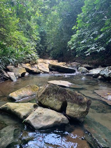 River Walk 2019