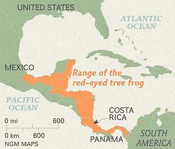 Red Eyed Frog map.jpg