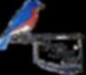 okbbs-logo-v2_edited.png