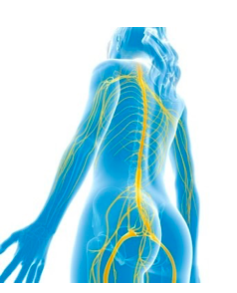 Sciatica: Is it your BUTT or your BACK?